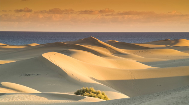 Seduced by a sea of dunes in Gran Canaria