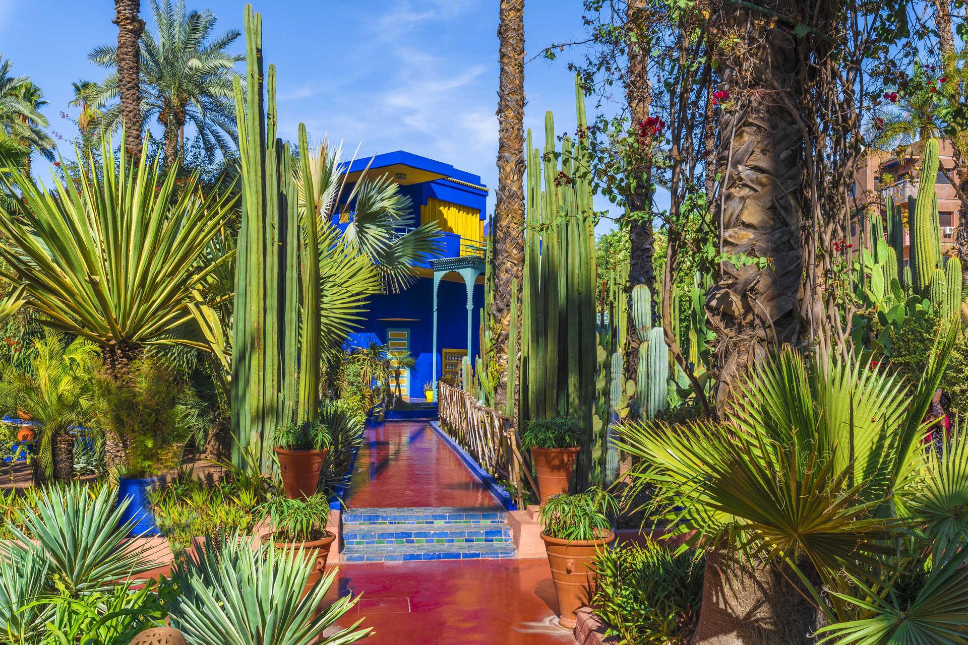 Majorelle gardens, inspiration in Marrakech